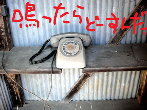 鳴ったらヤバイよね~、出たらもっとヤバそう (^◇^;)