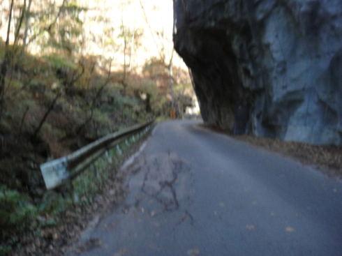 県道で、デカイトラックも通る道です。