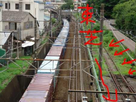 武蔵野線と一段高い廃線