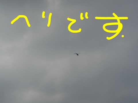 今日もヘリが飛ぶ。